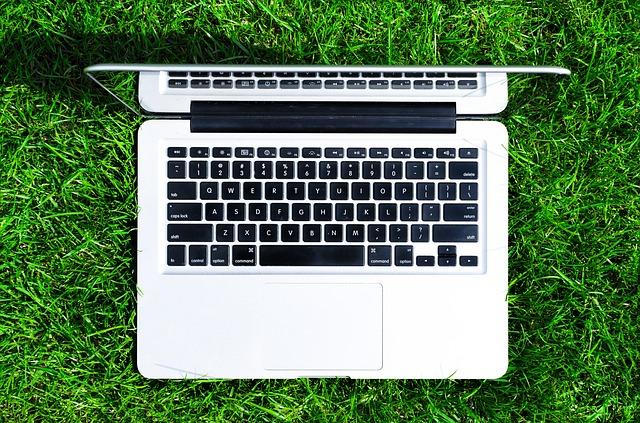 notebook na trávníku